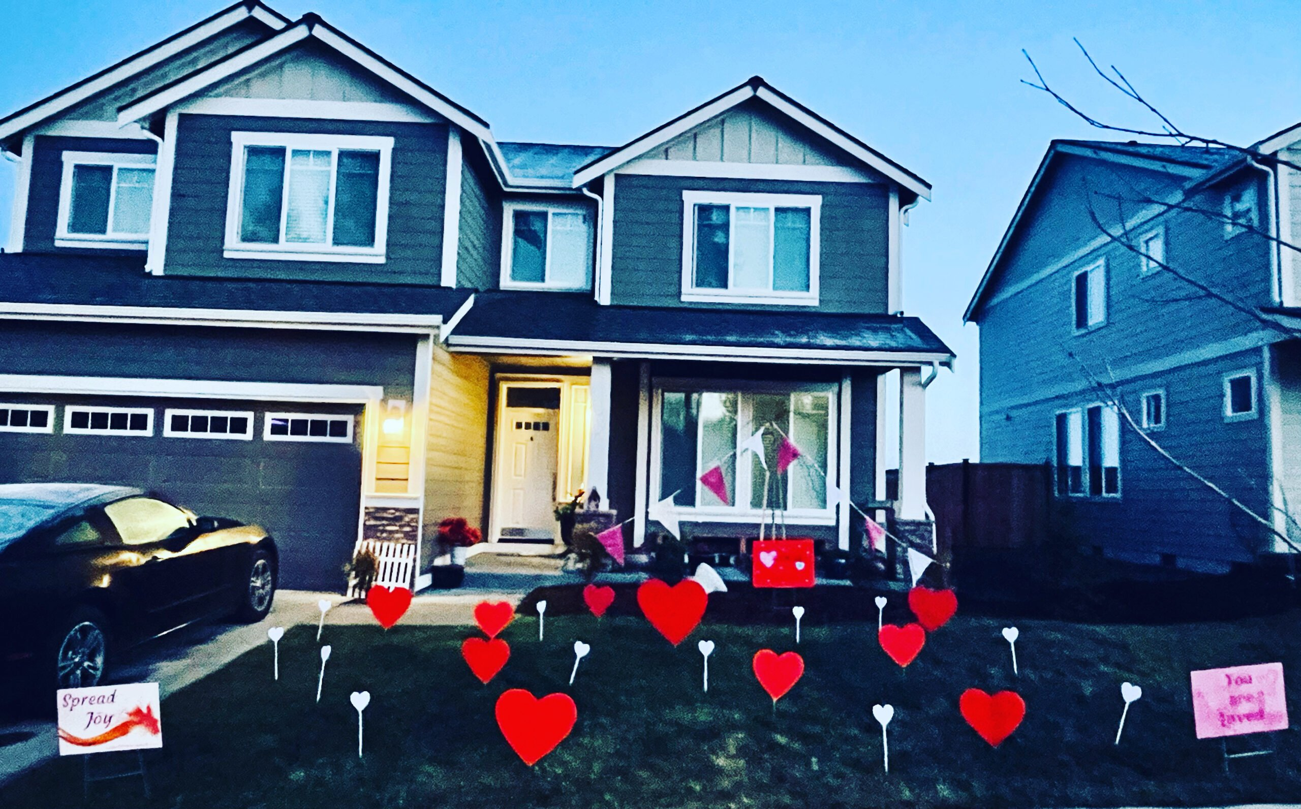 Yard Filled With Hearts